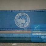 Mosaic Tiles Work at DHA Sports Club, Lahore, Pakistan